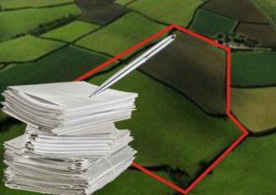 Дело об обращении взыскания на земельные участки должника